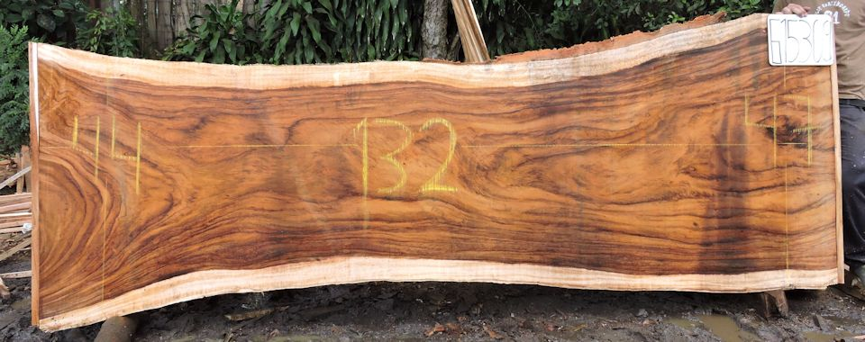 Live Edge Wood Slabs Available